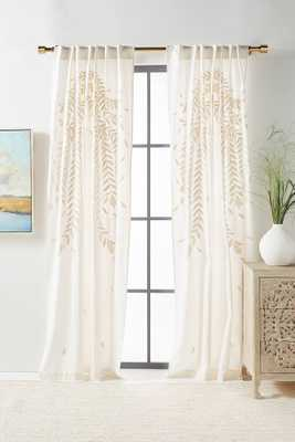 Embroidered Reme Curtain - Anthropologie