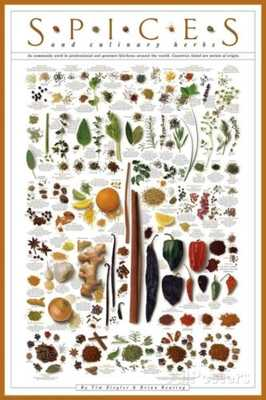 Spices and Culinary Herbs Art Print - 24x36 - eBay