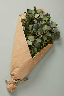 Dried Eucalyptus Bouquet - Anthropologie