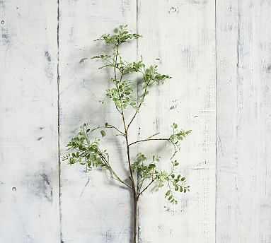Faux Green Petal Leaf Branch - Pottery Barn