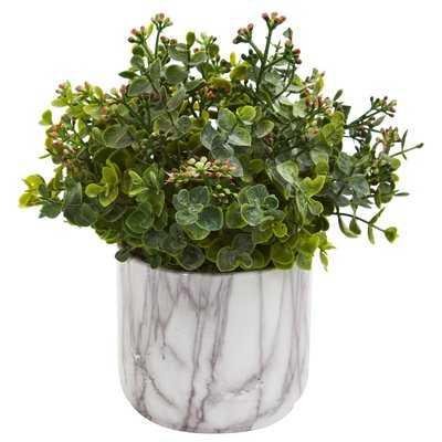 Eucalyptus Plant Desktop Foliage in Vase - Wayfair
