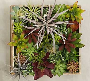 Succulent Wall, Green - Small - Pottery Barn