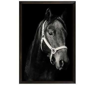 "Dark Horse by Jennifer Meyers, 28 x 42"", Ridged Distressed, Black, No Mat - Pottery Barn"