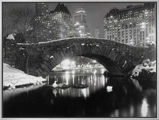 New York Pond in Winter - art.com