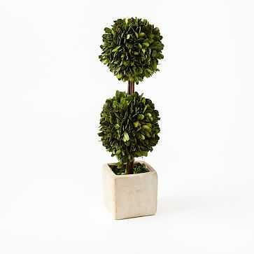 "Boxwood Double Topiary, Large (16"") - West Elm"
