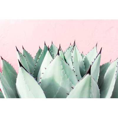 'Sweet Succulents' Graphic Art Print - AllModern