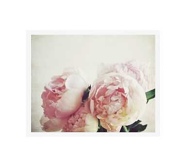 """Pink Peony by Lupen Grainne, 20 x 16"""", Wood Gallery, White, No Mat - Pottery Barn"""