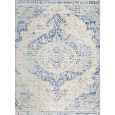 Asheville Blue 9' x 12' Rug - Home Depot