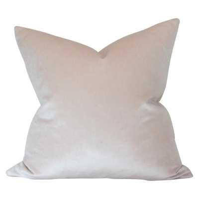 Champagne Velvet - 18x18 pillow cover - Arianna Belle