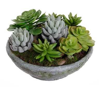 "Faux Succulents in Bowl - 10"" X 10"" - Pottery Barn"