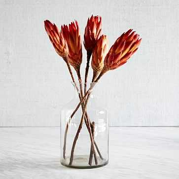Natural Protea - West Elm