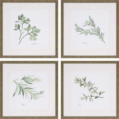 'Herbs' 4 Piece Framed Graphic Art Print Set - Wayfair