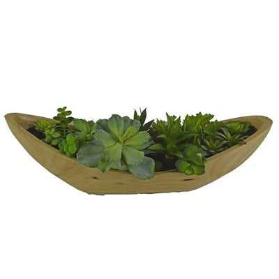 Desktop Succulent Plant in Wooden Pot - Wayfair