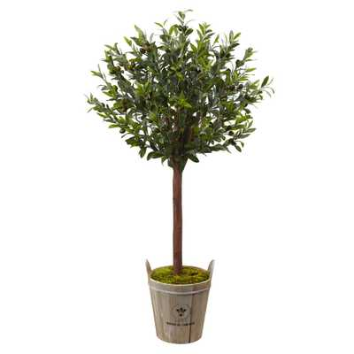 Olive Topiary Tree with European Barrel Planter - Home Depot