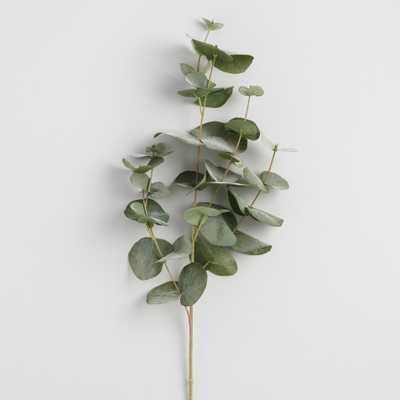 Faux Eucalyptus Spray - World Market/Cost Plus