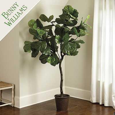 Bunny Williams Faux Fiddle Leaf Fig Tree - Ballard Designs