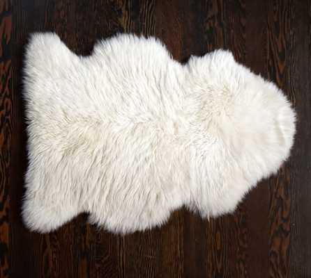 Sheepskin Rug, 2'x3'- Ivory - Pottery Barn