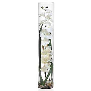 Orchid in Glass Vase - Z Gallerie