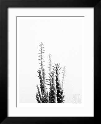 CACTUS - Framed - art.com
