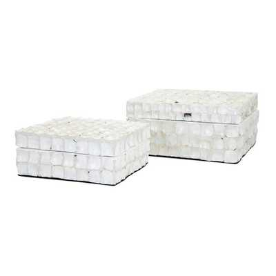 Barbuda Shell Boxes - Set of 2 - Mercer Collection
