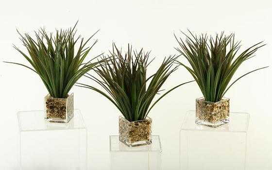 WILD GRASS - SET OF 3 - Home Decorators