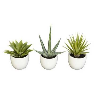 Nearly Natural Southwest Collection (Set of 3) - Target