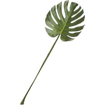 monstera leaf - CB2