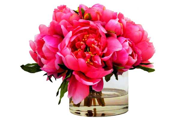 "8"" Peonies in Cylinder, Faux, pink - One Kings Lane"