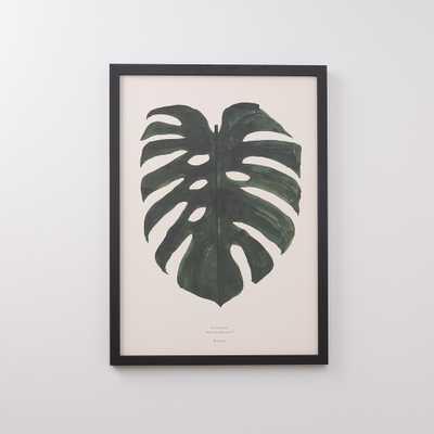 Split Leaf Print - Schoolhouse Electric