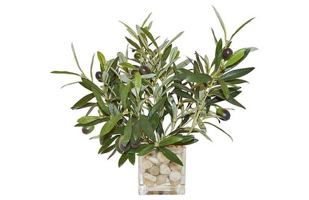 """12"""" Olive Branches in Cube Vase, Faux - One Kings Lane"""