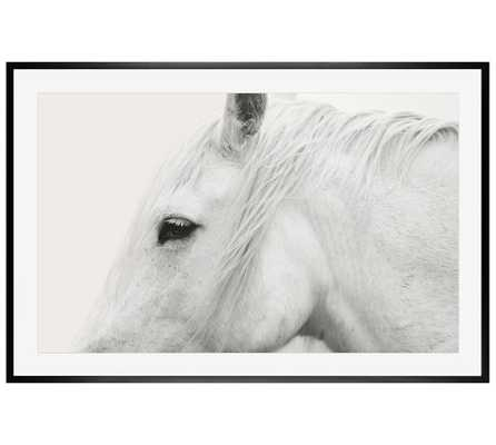 "WHITE HORSE FRAMED PRINT  42 X 28"" BY JENNIFER MEYERS-black distressed frame with mat - Pottery Barn"