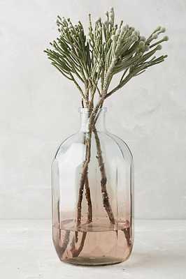 Gradient Vase - Pink - Anthropologie
