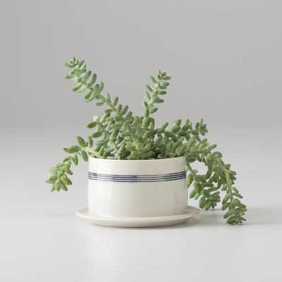 Banded Porcelain Planter - Medium - Schoolhouse Electric