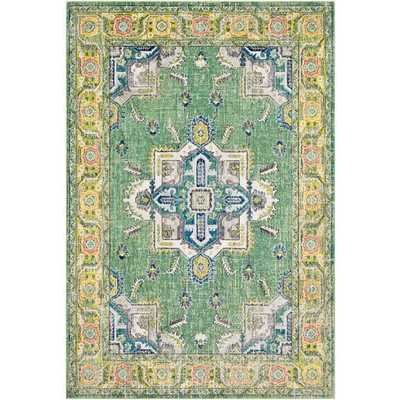 "Aura silk ASK-2313 5'3"" x 7'6"" - Neva Home"