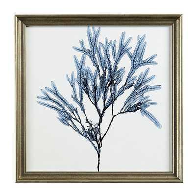 Ballard Designs Petite Blue Seaweed Art - Print 4 - Ballard Designs