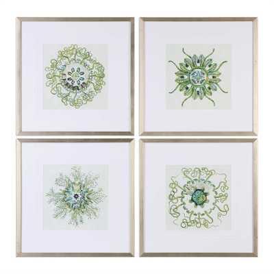 Organic Symbols 4 Piece Framed Graphic Art Set - Hudsonhill Foundry