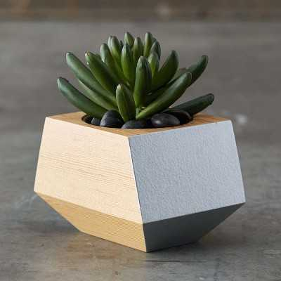 Boxcar Single Planter - Williams Sonoma