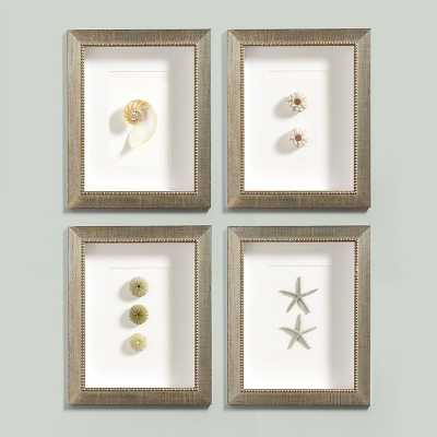 Ballard Designs Sea Shell Art - Starfish - Ballard Designs