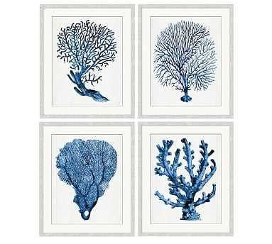 """Coral in Blue Print, 20 x 24"""", Set of 4 - Pottery Barn"""