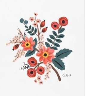 Coral Botanical Print - Lulu and Georgia