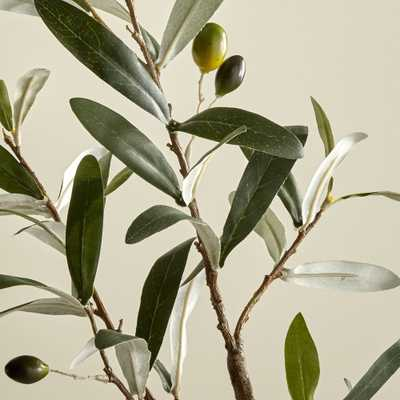 Faux Olive Stem - Crate and Barrel