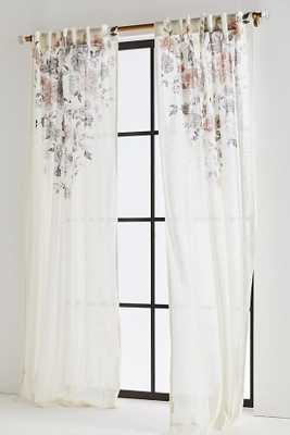 "Felicity Curtain, 96""L - Anthropologie"