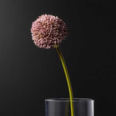 Purple Faux Allium - CB2