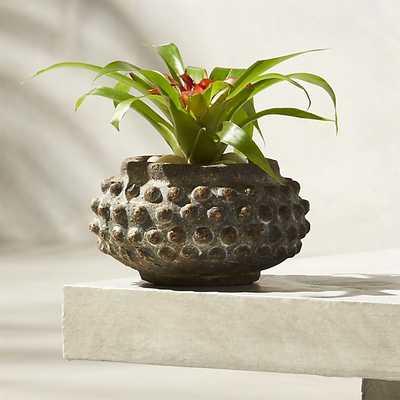 nico small planter - CB2