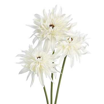Dahlia Stem - Set of 3 - Z Gallerie