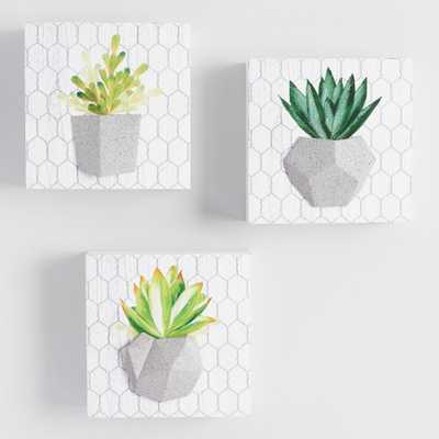 Potted Cactus Wall Art Set of 3: Green by World Market - World Market/Cost Plus