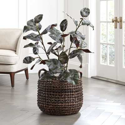 Artificial Rubber Tree - Crate and Barrel