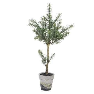 Artificial Plant in Pot - Wayfair