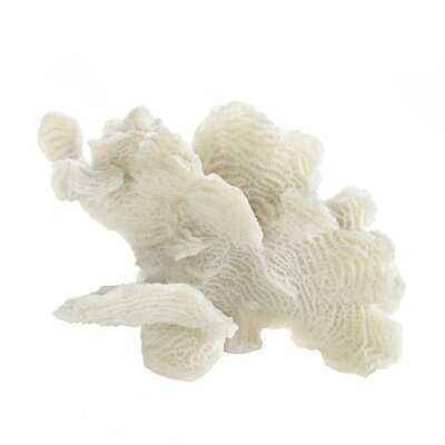Tockington Coral Tabletop Decor Sculpture - Wayfair