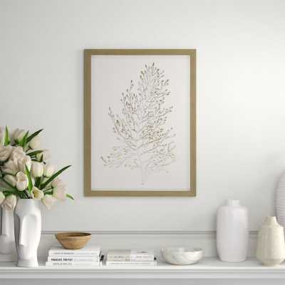 Paragon Foil Algae IV Framed Graphic Art - Perigold